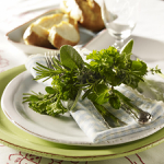 Превью aromatic-spice-herbs-decoration1-2 (600x600, 395Kb)