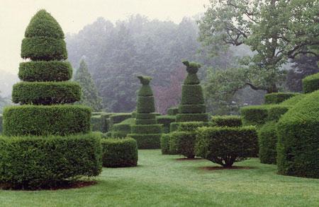 topiary8 (450x293, 41Kb)