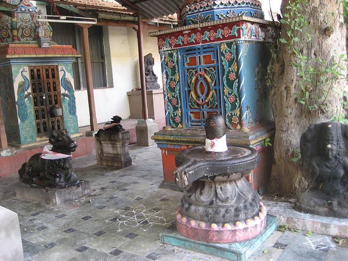 Танджавур - Дворец Наяков и музеи 18396