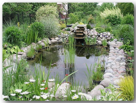 Beautiful-water-gardens- (436x330, 97Kb)