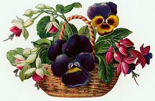 0123 0123 Flowers1-047-SummertownSun (320x209, 27Kb)