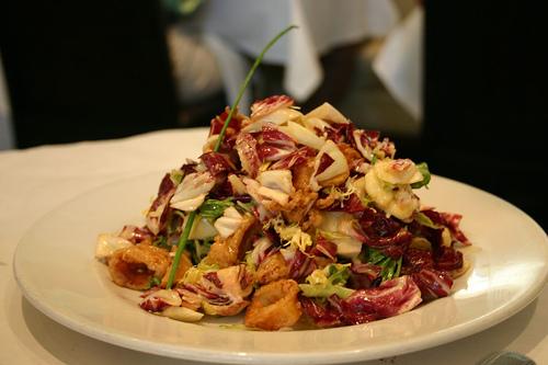 45212922_2835a4eda5 calamari salad _ mi piace_M (500x333, 83Kb)