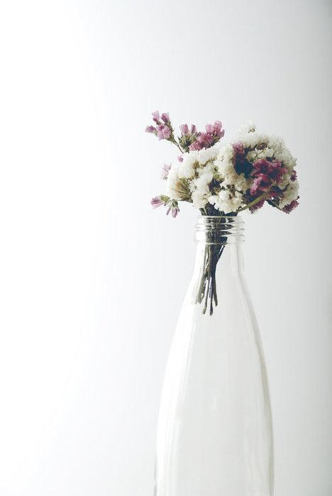 3259274_flowers_in_a_bottle_by_quelquechose_large (468x700, 25Kb)