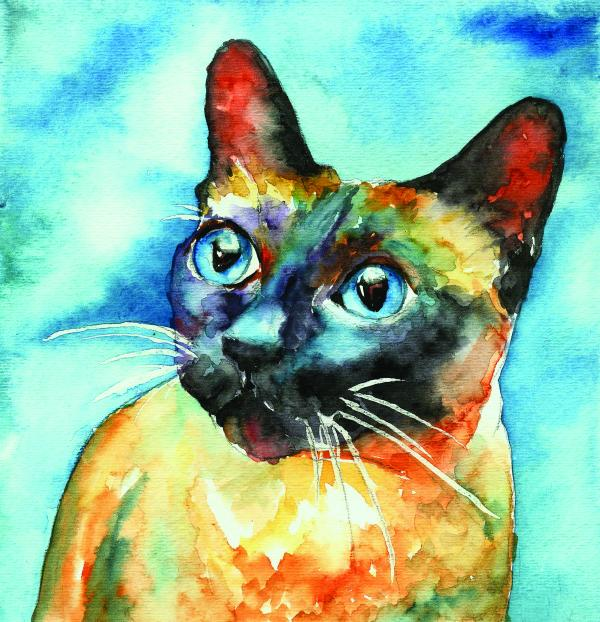 siamese-cat-christy-freeman_004 (600x622, 78Kb)