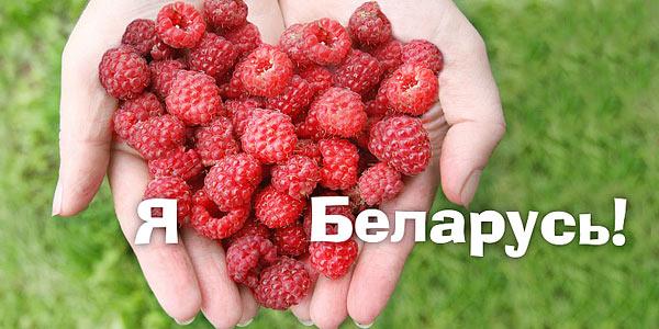 Реферат по истории Беларуси на заказ