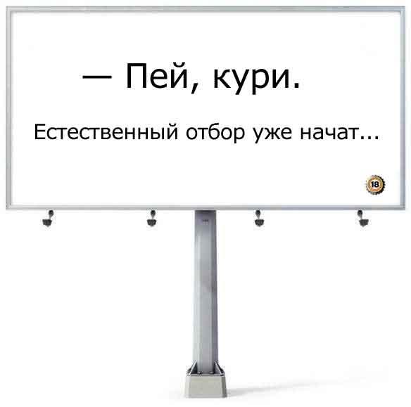 x_f0491451 (584x579, 20Kb)