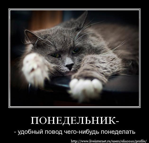 3807717_73272623_large_3240369_demotivator_2_ (630x604, 194Kb)