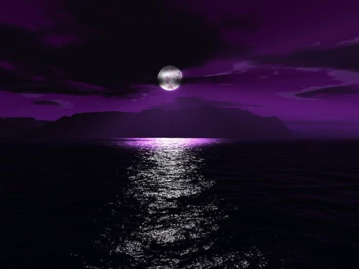 purplem (700x525, 48Kb)