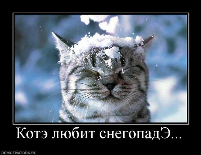 829579_kote-lyubit-snegopade (700x538, 46Kb)