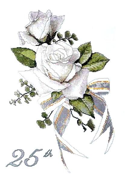Цветы.  Белая роза.