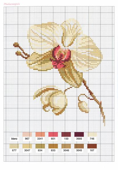 Flowers Fleurs (2004)_hq_44 (405x582, 56Kb)