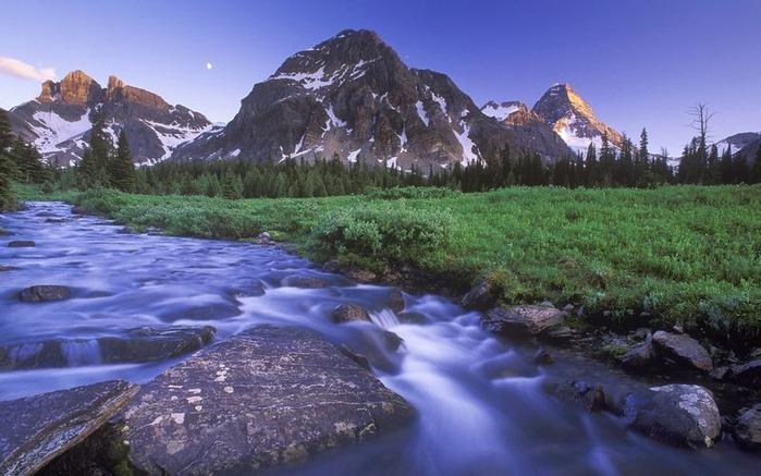 Красивые фотографии природы 39