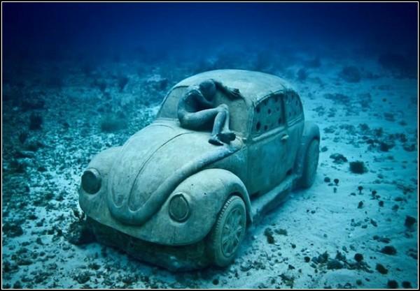 Коралловые рифы самое интересное в