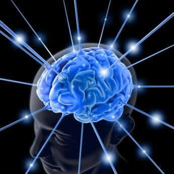 мозг (346x346, 14Kb)
