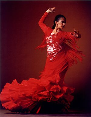 Cal_CaminosFlamenco_5010_opt (300x384, 16Kb)