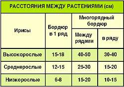 12_01_03 (250x176, 11Kb)