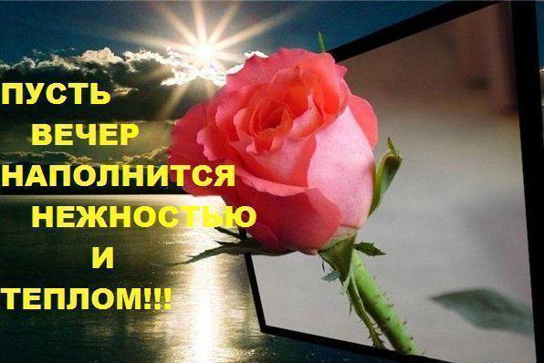 http://img1.liveinternet.ru/images/attach/c/3/75/655/75655853_70746003f615.jpg