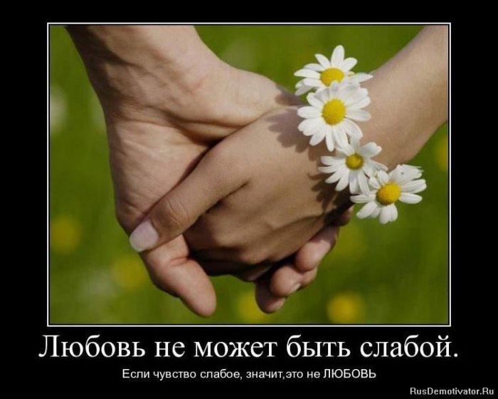 3089600_1287929131_1287150532_demotivatorlyubov (700x560, 52Kb)