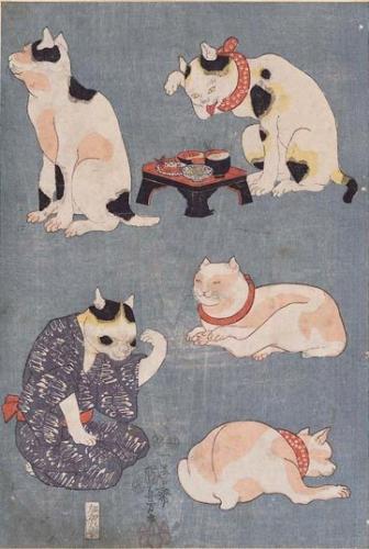 кошки в японии/3185107_koshka (336x500, 128Kb)