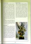 Книги - Волшебный бисер.  Е.Башкатова File0015