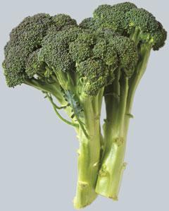 brokkoli (240x299, 17Kb)