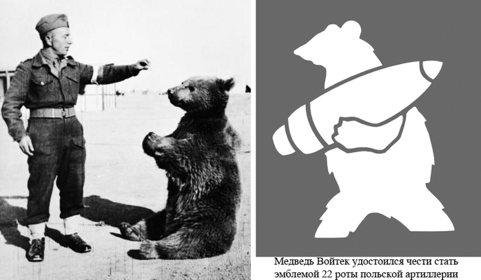 войтек медведь солдат (700x406, 112Kb)