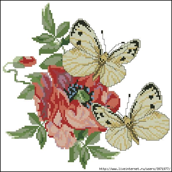 3971977_Butterflies_114 (595x595, 268Kb)