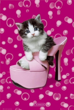 lgph0222+kitten-in-a-shoe-keith-kimberlin-poster (303x452, 86Kb)