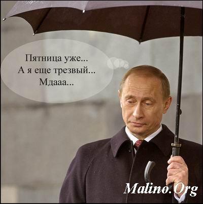 Путин/4348076_pyatnica_putin_1_ (400x402, 25Kb)