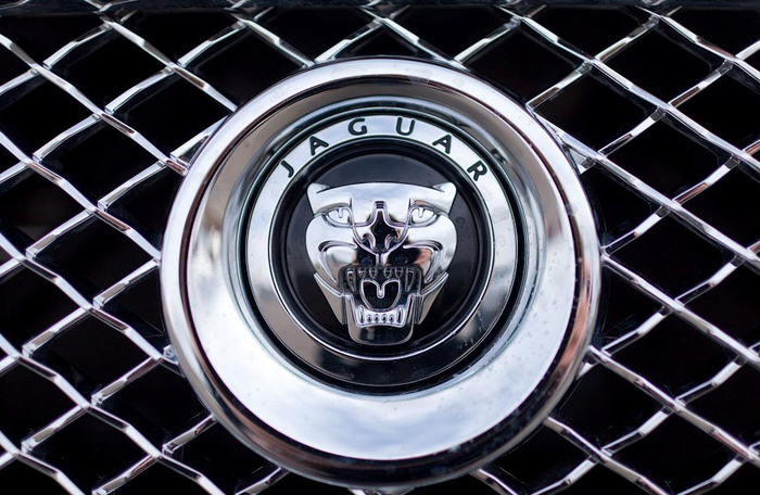 Бойцовский клуб Jaguar/2270477_451 (700x456, 131Kb)