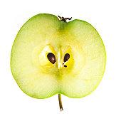apple (170x170, 7Kb)