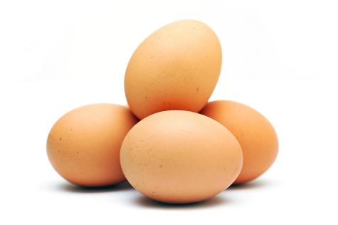 eggs (475x316, 50Kb)