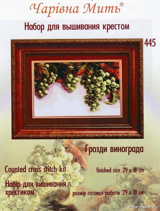 виноград с тенью (532x700, 205Kb)