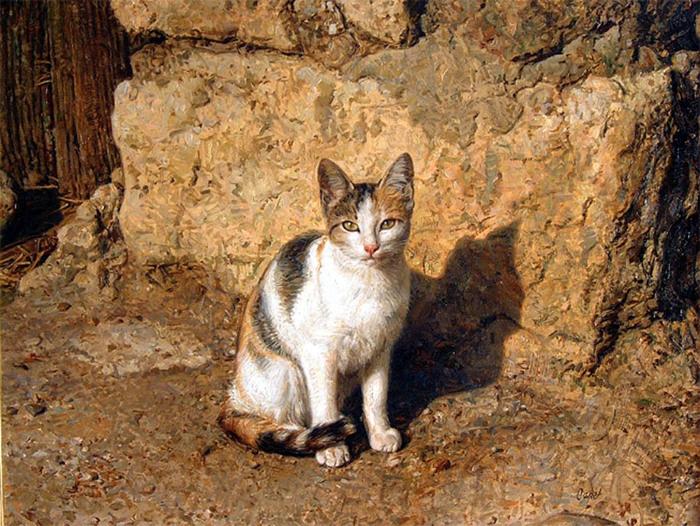 gato (700x526, 197Kb)
