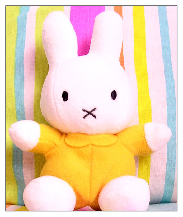 Miffy_Photo_01_by_Miffy_fans (588x700, 133Kb)