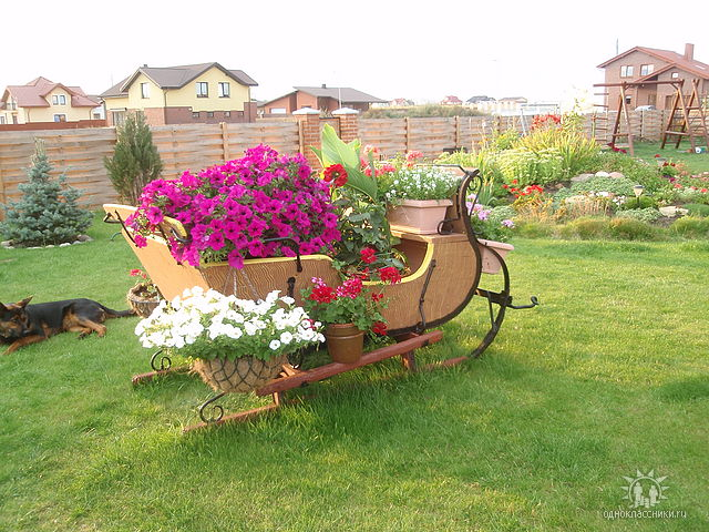Интересни цветарници в градината