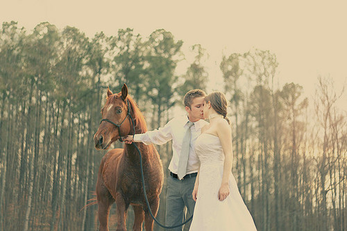 bride-couple-dress-horse-kiss-love-Favim.com-60764 (500x333, 84Kb)