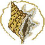 Превью Shell 1 (213x211, 12Kb)