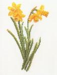 Превью TG 3083 Narcissus yellow (474x624, 84Kb)