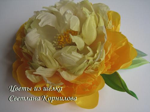 IMG_9876 (500x375, 166Kb)