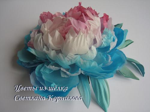 IMG_9884 (500x375, 163Kb)