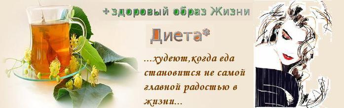 банер ДИЕТА ОНА надписи ЭТАЛОН (700x219, 29Kb)
