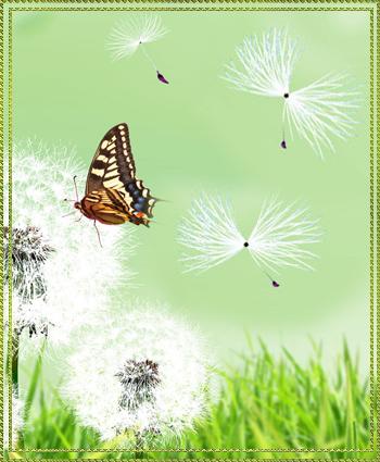 Рам-бабоч (350x425, 260Kb)