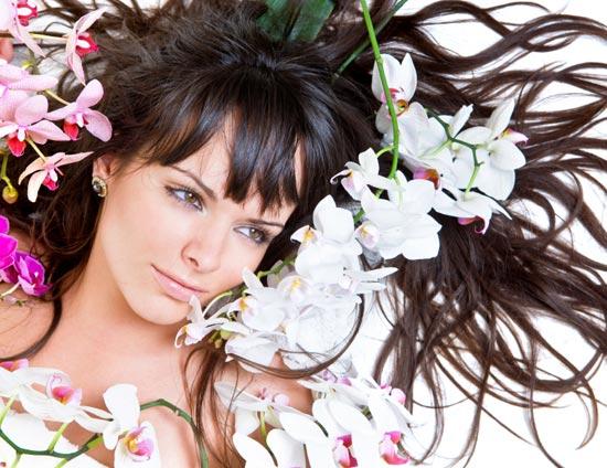домашний уход за волосами/3185107_volosi (550x424, 61Kb)