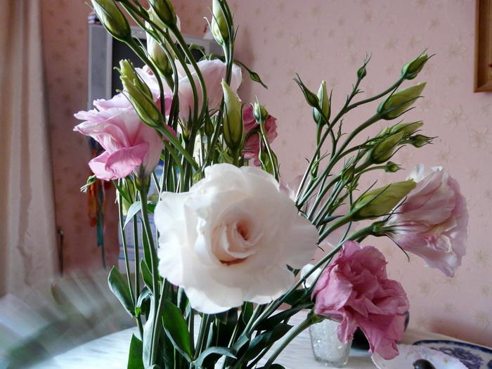 Цветок похож на мелкую розу