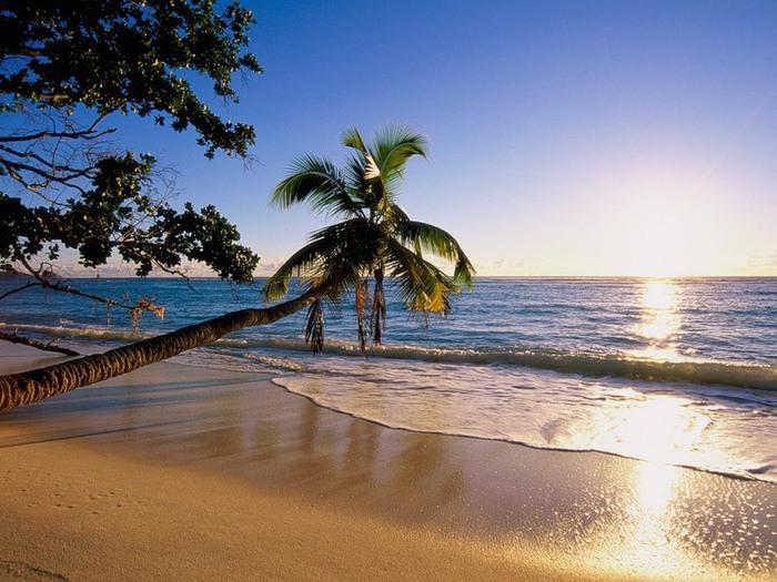 море пляж (700x525, 123Kb)