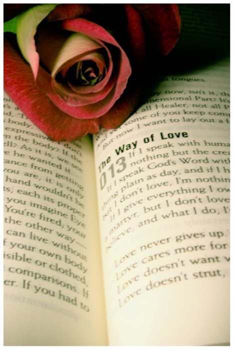3476064_the_way_of_love_by_christians (468x700, 183Kb)