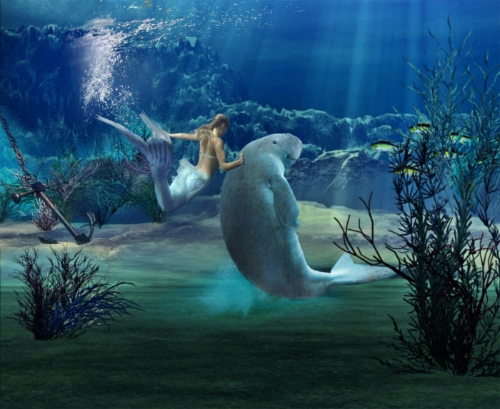 3886746_main_dugong_mermaid_image (700x573, 273Kb)