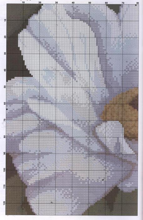 16 (456x700, 82Kb)