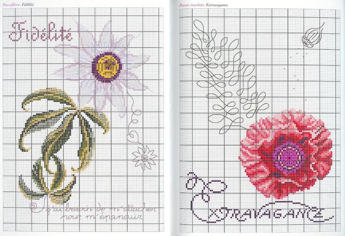 Langage des Fleurs 20 (700x480, 163Kb)
